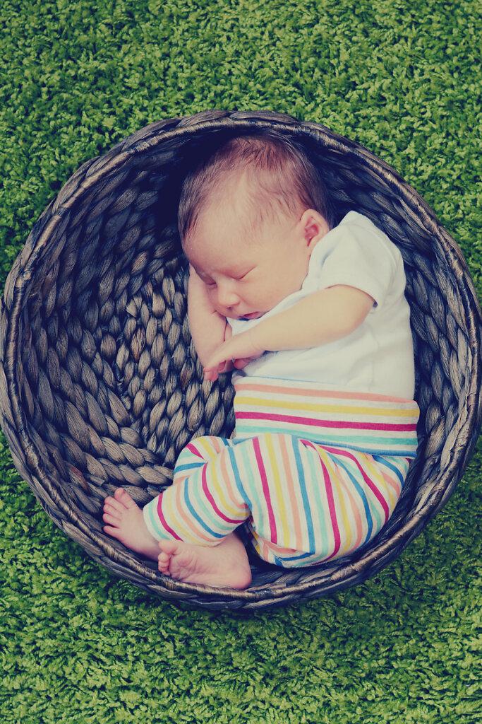 Babyfotos-015.jpg